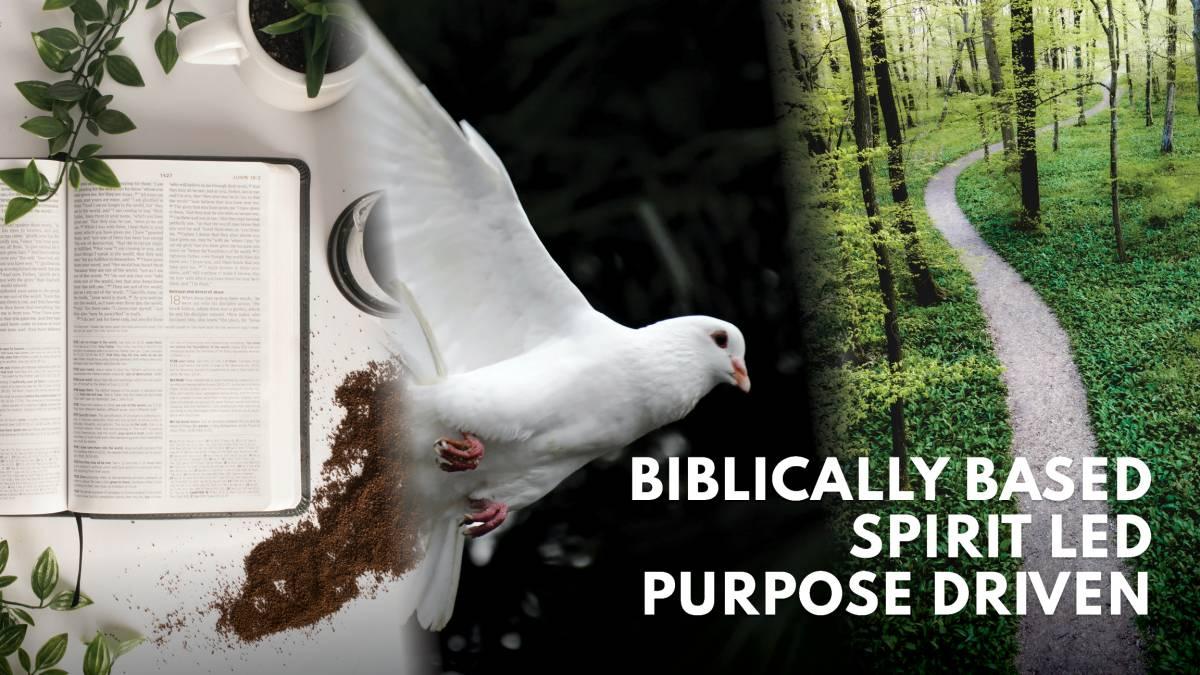 Bible Based - Holy Spirit Led - Purpose Driven